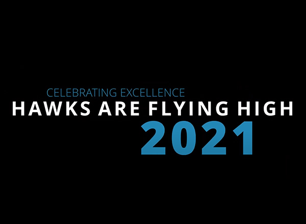 Hawks are flying high text art