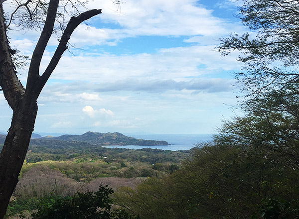Scenic view of Costa Rica skyline from a mountain top with tree in view.