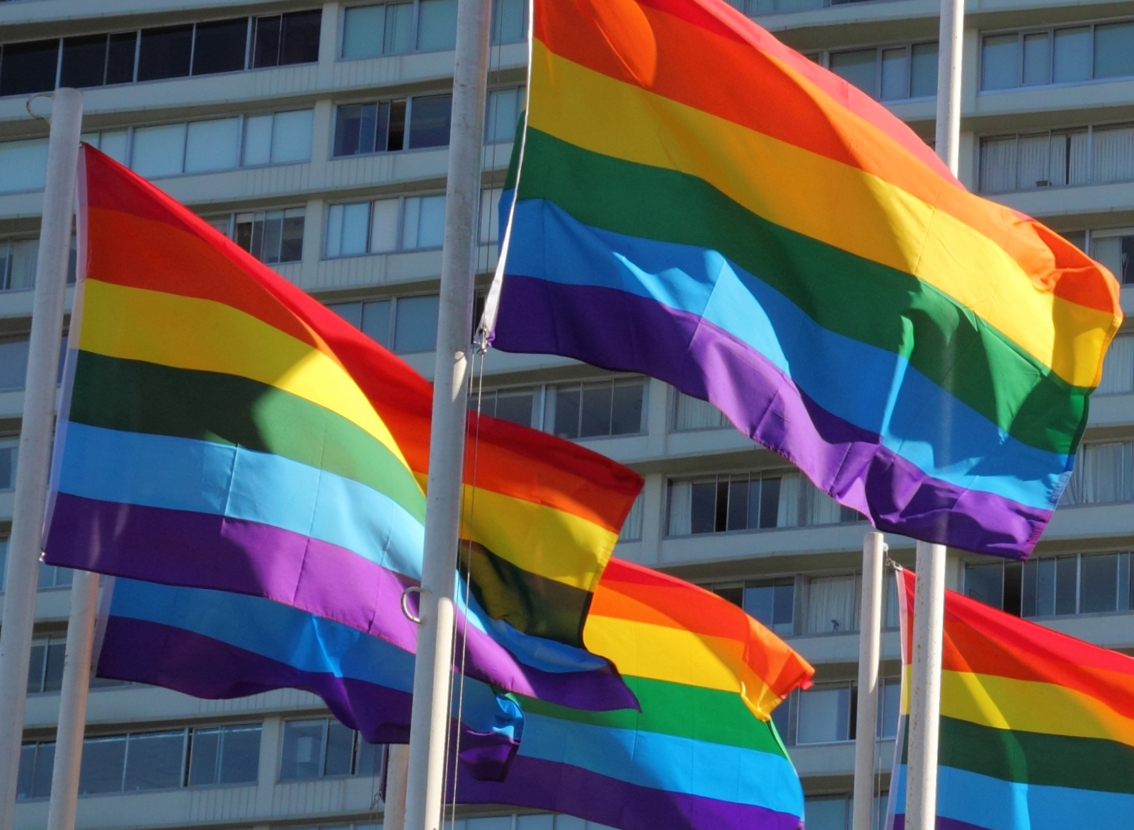 Rainbow flags in front of building