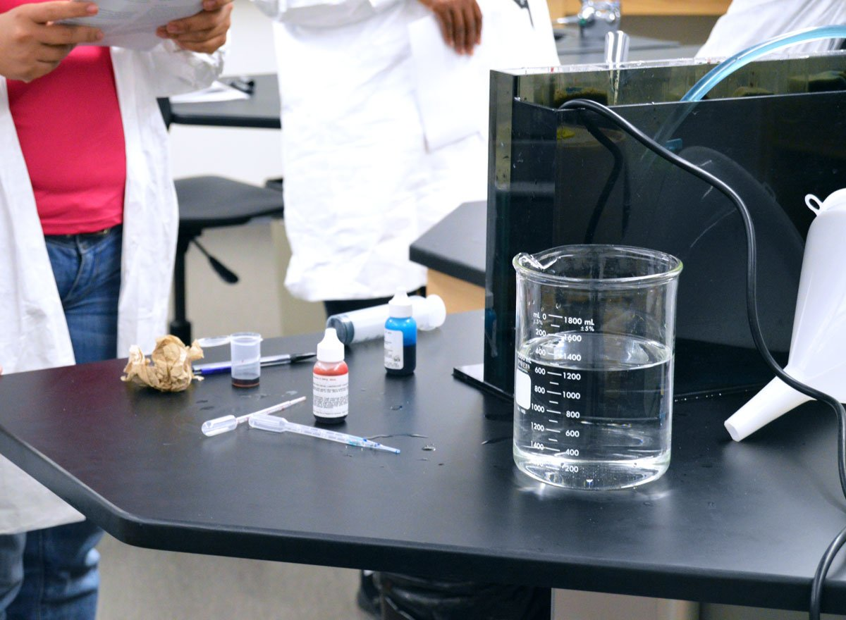 BIO 139 Environmental Science Laboratory