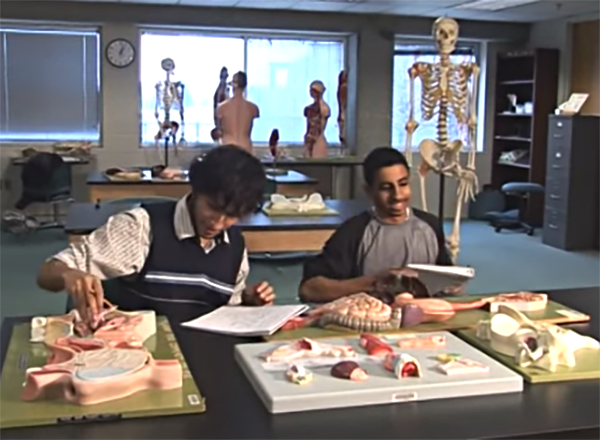 Two Henry Ford Early College students study in an anatomy lab