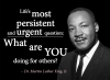 """Life's most persistent and urgent question: What are YOU doing for others?"""